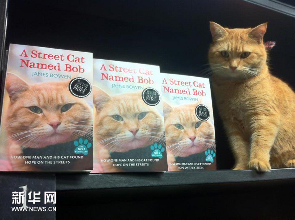 Кот по имени роль
