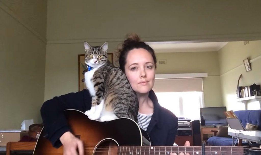 Девушка и коты клип